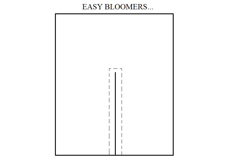Easy Bloomers
